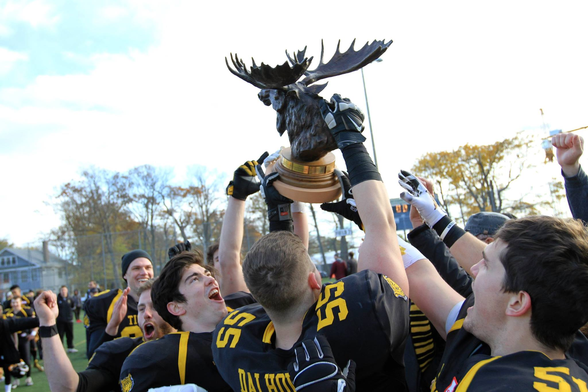 Dalhousie Tigers Football Helmet Fund